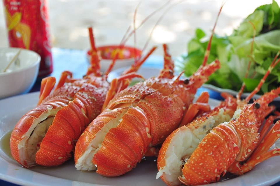 Tôm hùm là một trong những loại hải sản quý, có giá trị kinh tế cao bởi thịt tôm thơm ngon, ngọt lành và chứa hàm lượng dinh dưỡng cao.