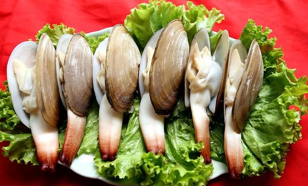 Ốc vòi voi - loại ốc dinh dưỡng