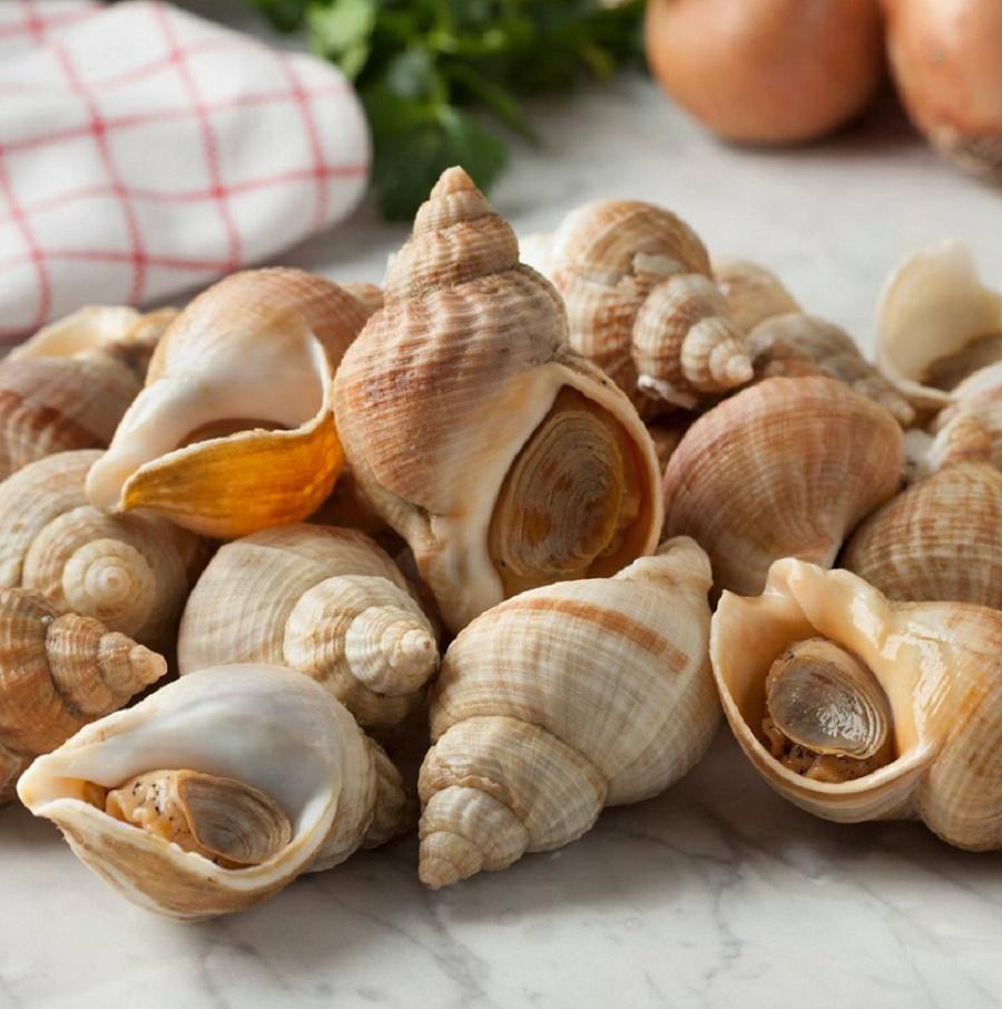 Ốc Bulot Pháp món ăn ngon giàu dinh dưỡng