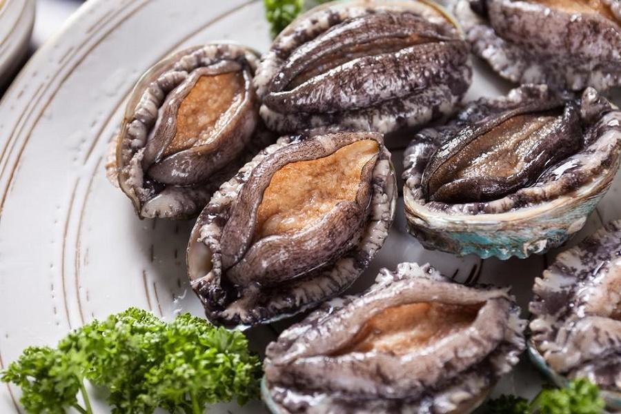 """Bào ngư là món ăn bổ dưỡng thuộc loại hải sản quý, là một trong tám món ăn tuyệt phẩm gọi là """"bát trân"""" thường xuất hiện trong các bữa ăn vương giả."""